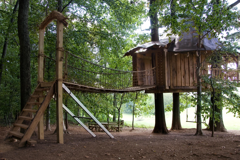 Tree House 03