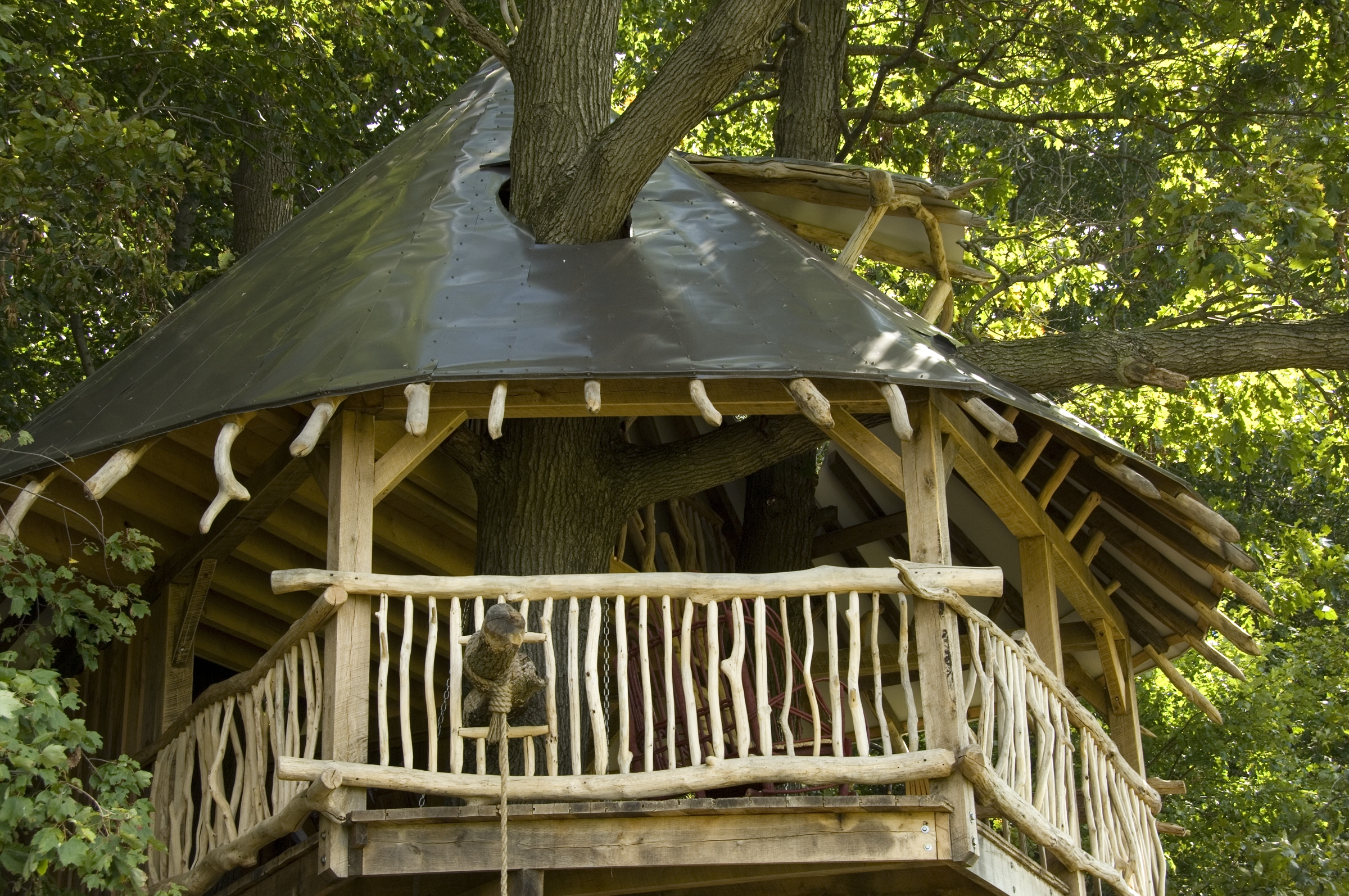 Tree House 31