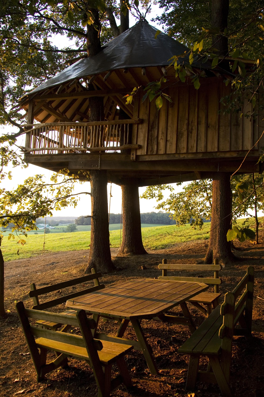 Tree House 35