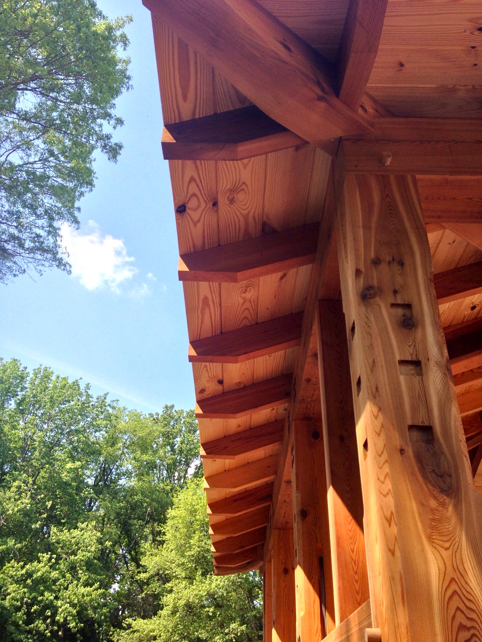 timber framing, Hugh Lofting TImber Framing, Western Red Cedar, timber frame, timber framed porch, timber framed screened in porch, screened in porch, screen porch