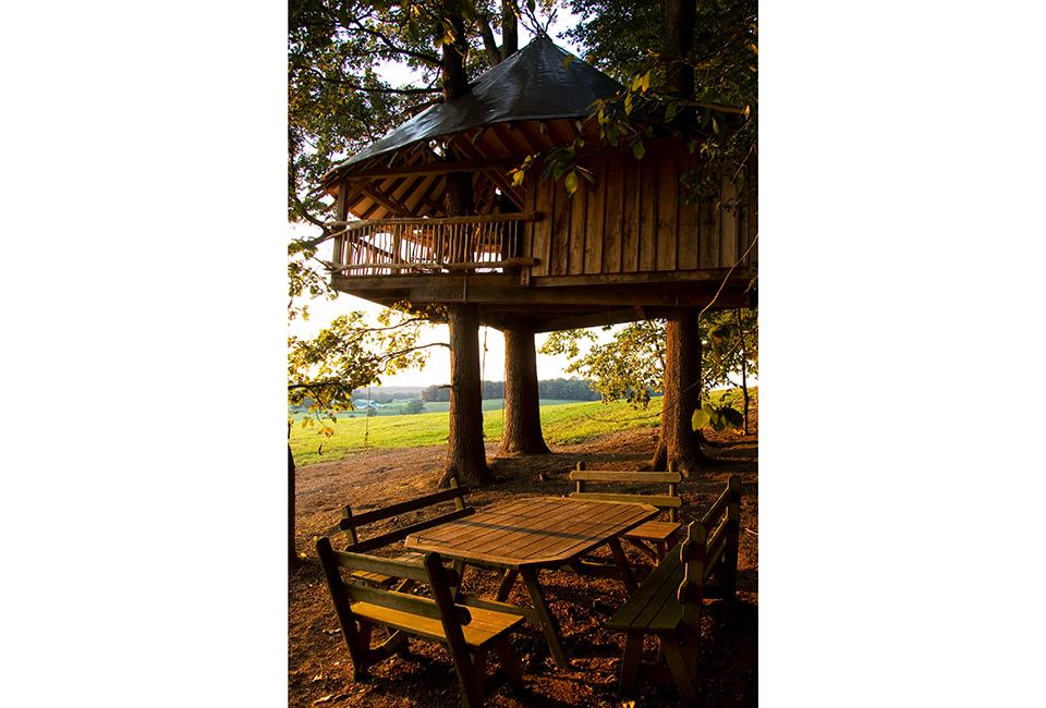 13-35-Tree-House-0469-960×650