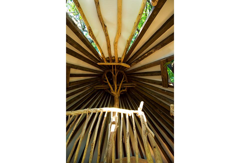 13-Tree-House-0373-960×650