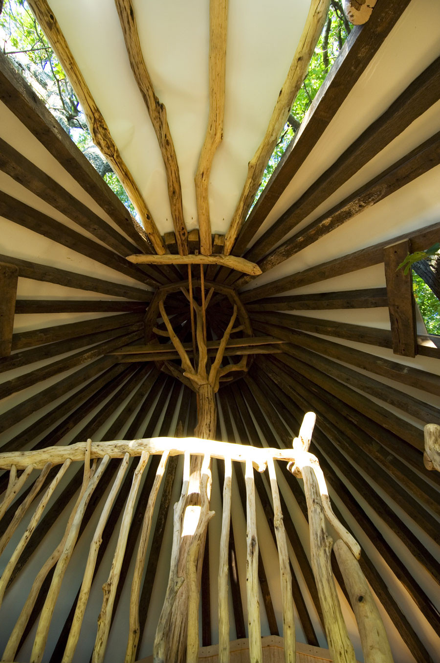 13-Tree-House-0373