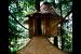 5-05-Tree-House-0164b-960×650